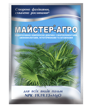 Добриво Майстер-Агро для всіх видів пальм 25 г, Караван, фото 2