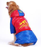 Зимний комбинезон для собак крупных пород Adidog. Одежда для собак.