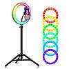 Разноцветная кольцевая LED лампа RGB MJ26, диаметр 26 см, USB (со штативом 210см), фото 2
