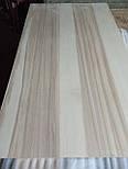 Деревянная столешница. Столешница из дерева под заказ, фото 4