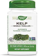 Бурые водоросли ламинария Nature's Way Kelp Whole Thallus 600 mg 180 капсул