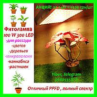 Фитолампа для растений 100W 300LED Фитосветильник. Фито лампа. Фитопанель. Освещение для растений.