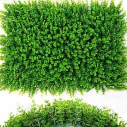 Газон-коврик самшитовый  для фитостен, 40 × 60 см.