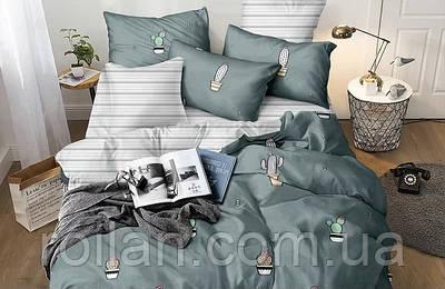 Двоспальний комплект постільної білизни Кактус