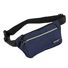 Бананка чоловіча сумка на пояс із тканини Sport Синій (716654)