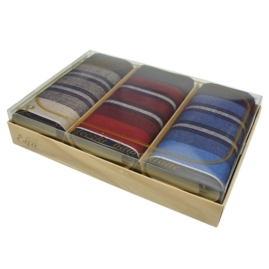 Яркие мужские носовые платки в подарочной упаковке EGA 3 шт. СН_178/3