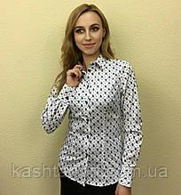 Женская блуза белого цвета в черный турецкий огурец