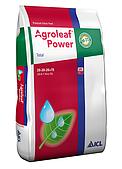 Agroleaf Power «Total» (збалансований) 20-20-20+TЕ 15 кг