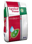Agroleaf Power «Magnesium» (магній) 10-5-10 +16MgO+32SO3+TЕ 15 кг