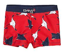Детские плавки для мальчика Морские скаты Minoti 1-8 лет, 80-128 см