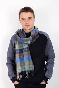 Чоловічі шарфи FAMO Чоловічий шарф Ватсон хакі+синій 180*30 (MS-04)#L/A