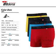 Трусы мужские боксеры стрейчевые х/б Indena underwear 85016, Полтава, (в упаковке разные размеры)хлопок,