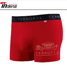 Трусы мужские боксеры стрейчевые х/б Indena underwear 85020, (в упаковке разные размеры)хлопок, 30030544