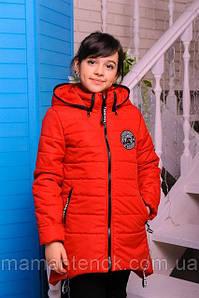 Весняна куртка для дівчинки