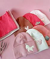 Комплект демисезонный для девочки шапка и хомут