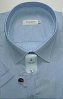 Мужская сорочка большой размер