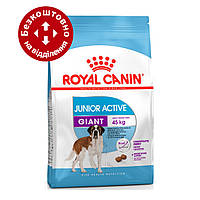 Royal Canin Giant Junior Activ 15 кг для активних цуценят гігантських порід