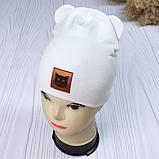 """М 93532. Шапка трикотажна для дівчинки """"Кіт"""" від 6 місяців до 4 років, різні кольори, фото 4"""