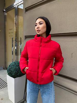 Стильный красный короткий зимний пуховик женский
