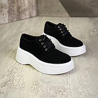 Женские  замшевые туфли на шнуровке 36-40 р чёрный, фото 1