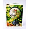 Обкладинка для паспорта Глобус