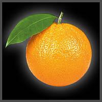 Ароматизатор Premium Апельсин