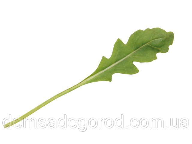Рукола ТРИЦИЯ Професійне насіння 0.3