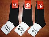 """Подростковые носки с надписью """"Киця-тигриця"""".  Высокая резинка. р. 36-40., фото 6"""