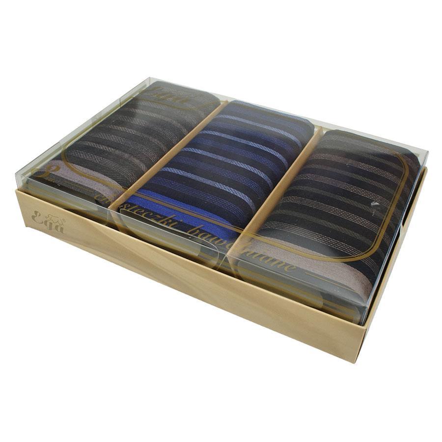 Набір темних смугастих чоловічих  носових хусток в упаковці Ega 3 шт СН-178 С
