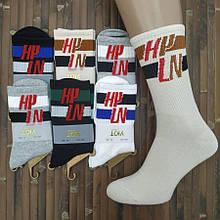 Шкарпетки чоловічі високі демі UYUT men cotton socks бавовна 39-42р.з малюнком асорті 20007683