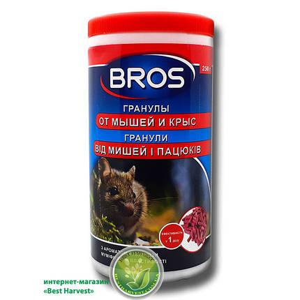 «Bros» (Брос) гранулы 250 г от крыс и мышей, оригинал, фото 2