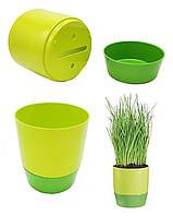 Горщик для кімнатних квітів/рослин Florabest, вазон