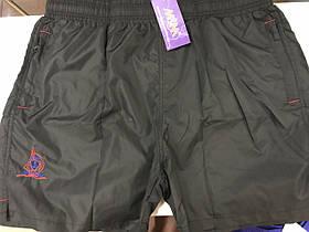Черные мужские универсальные шорты из плащевки с подкладкой 56-58