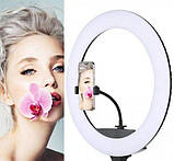 Кольцевая лампа 30 см, круглая лампа QX300, фото 2