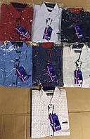 Сорочка для хлопчика 2-7( кольорові)
