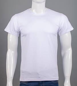 Футболка однотонная стретч 4шт (M-XXL) полноразмер (0Г00), Белый