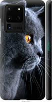 "Чехол на Galaxy S20 Ultra Красивый кот ""3038c-1831-44019"""