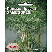 Пальма горная Хамедорея 5 шт