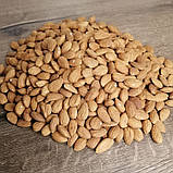 Мигдаль смажений 100 грам, фото 2