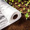Види та переваги білого агроволокна