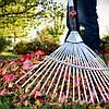Сезонные работы в саду и на огороде осенью