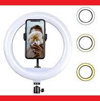 Кільцева LED лампа YQ-350 34см 220V 1 крепл.тел. + пульт