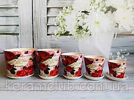 Набір квіткових горщиків Керамклуб №2 Гілка троянд