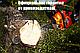 Бензопила Беларусмаш ББП-6100 (1 шина, 1 ланцюг, 12 місяців), фото 4