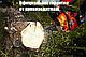 Бензопила Беларусь БП65-М, воздушный фильтр, 1 шина и 1 цепь, 7-ми полосный глушитель, шины 45 и 40  см, фото 6