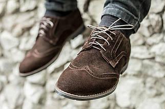 Чоловічі коричневі Туфлі Броги
