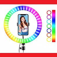Кільцева LED лампа RGB MJ38 38см 220V 1 крепл.тел USB + пульт