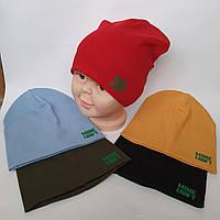 Купить Шапку трикотажную Оптом от производителя в Украине для мальчика двойная Р 52-54 оптом
