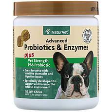 NaturVet, Поліпшені пробіотики і ферменти, а також пробіотик Vet Strength PB6 для собак, 120 жувальних