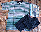 Трикотажная мужская пижама футболка с шортами, фото 4